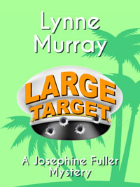 Large Target - new ebook cover